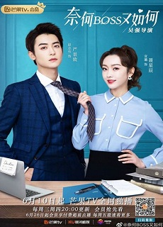 What If You're My Boss?